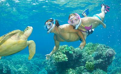 un adulte et une enfant sous l'eau rencontrent une tortue jaune
